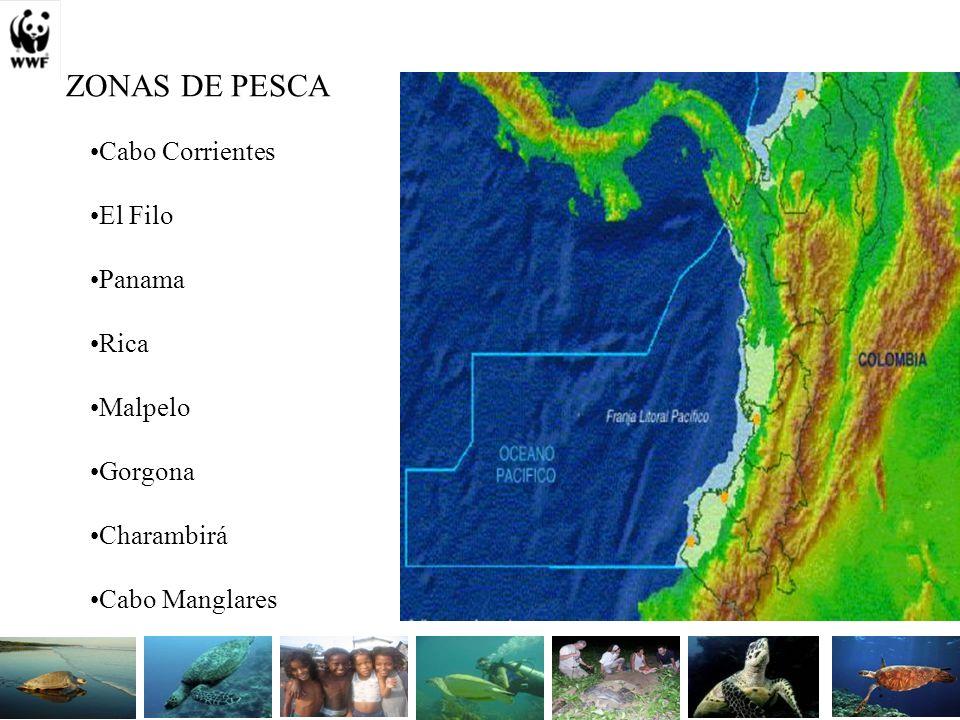 ZONAS DE PESCA Cabo Corrientes El Filo Panama Rica Malpelo Gorgona Charambirá Cabo Manglares