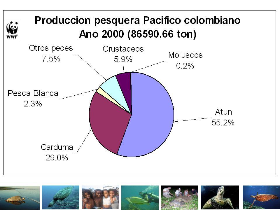 ATUNES Los principales recursos corresponden a Atún Aleta Amarilla y Barrilete, capturados por aproximadamente 26 embarcaciones la mayoría extranjera.