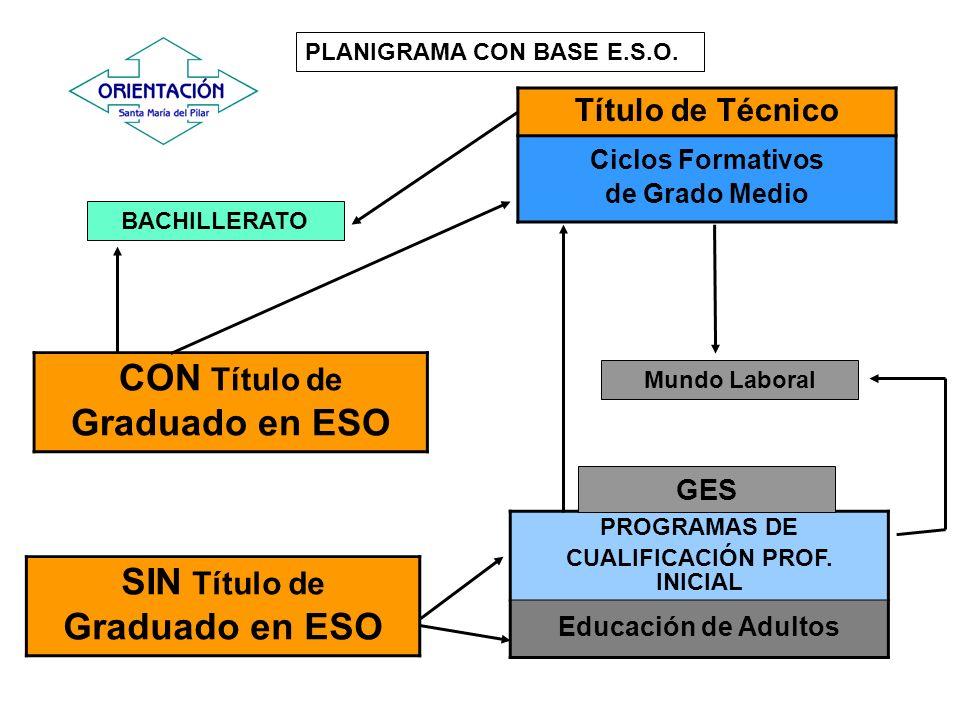 BACHILLERATO Mundo Laboral Título de Técnico Ciclos Formativos de Grado Medio Acceso mediante prueba PLANIGRAMA CON BASE C.F.G.M.