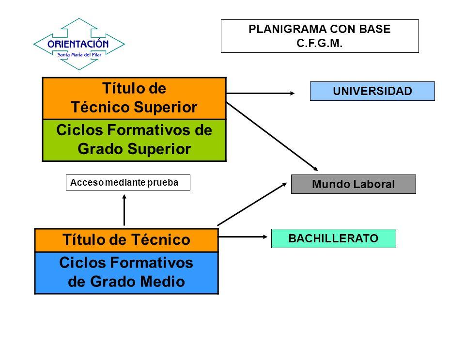 BACHILLERATO Mundo Laboral Título de Técnico Ciclos Formativos de Grado Medio Acceso mediante prueba PLANIGRAMA CON BASE C.F.G.M. Título de Técnico Su
