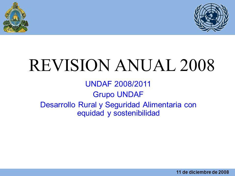 REVISION ANUAL 2008 UNDAF 2008/2011 Grupo UNDAF Desarrollo Rural y Seguridad Alimentaria con equidad y sostenibilidad 11 de diciembre de 2008
