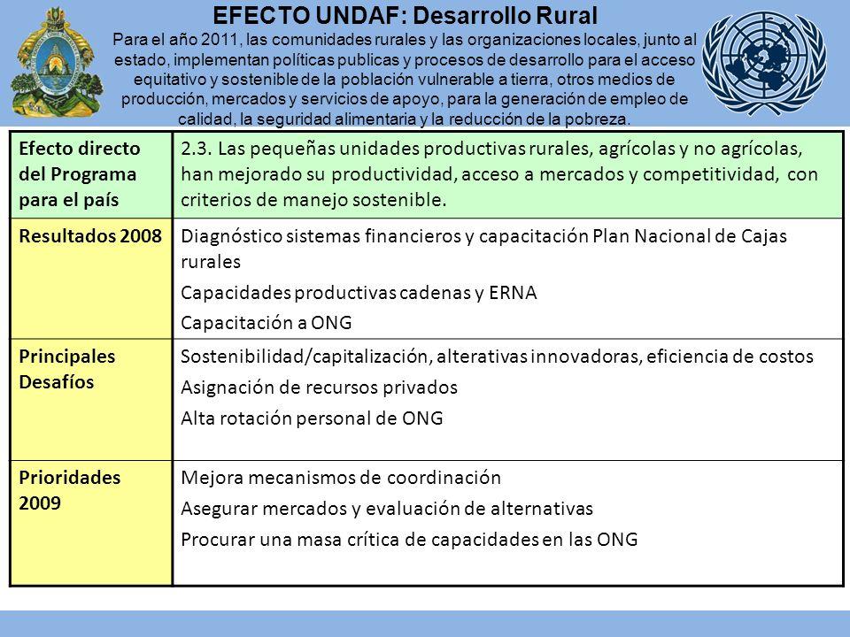 Efecto directo del Programa para el país 2.3.