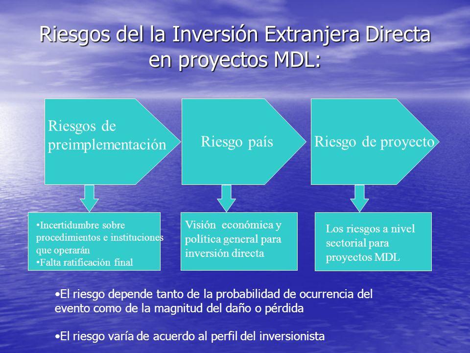La financiación de proyectos MDL y el riesgo del proyecto –Dimensionar, asignar y mitigar los riesgos –Tener una estructura financiera viable para tod