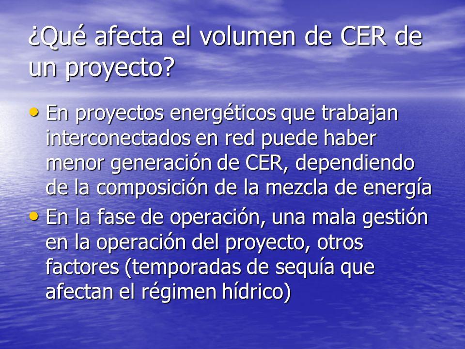 ¿Qué afecta el volumen de CER de un proyecto.