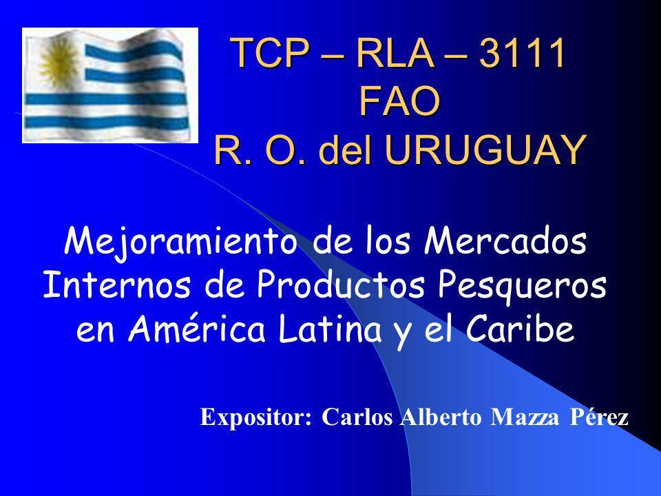 CONCLUSIONES El consumo de pescados y productos en Montevideo fue de 14.195 toneladas en el año 2006, lo que equivale a un consumo anual per cápita de 10,47 kg (equivalente peso de pescado entero).