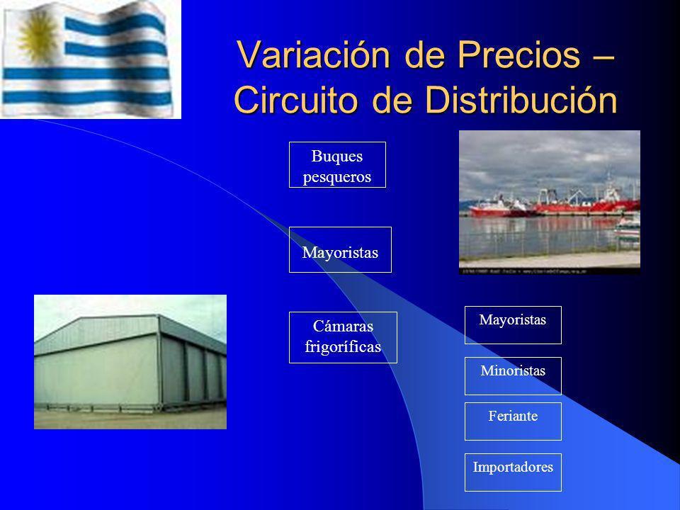 Variación de Precios – Flujograma de Distribución Buque Pesquero Camión Refrigerado AcopiadorFeriante Consumido r Final Se usan: Camiones aislados Cam