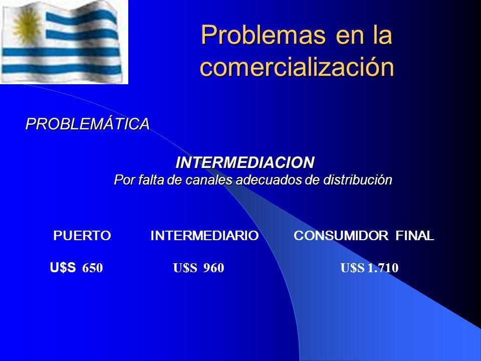 Asociaciones de consumidores en el país Derechos Ciudadanos - Consumidores Derechos Ciudadanos - Consumidores Liga de Amas de Casa, Consumidores y Usu