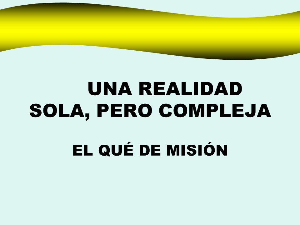 UNA REALIDAD SOLA, PERO COMPLEJA EL QUÉ DE MISIÓN