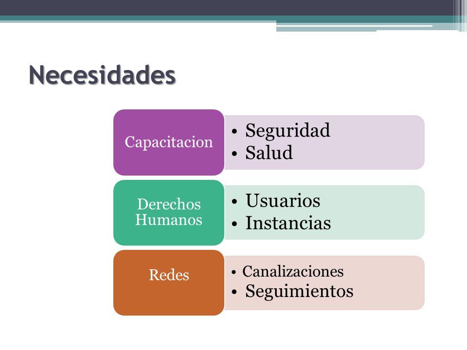Necesidades Seguridad Salud Capacitacion Usuarios Instancias Derechos Humanos Canalizaciones Seguimientos Redes