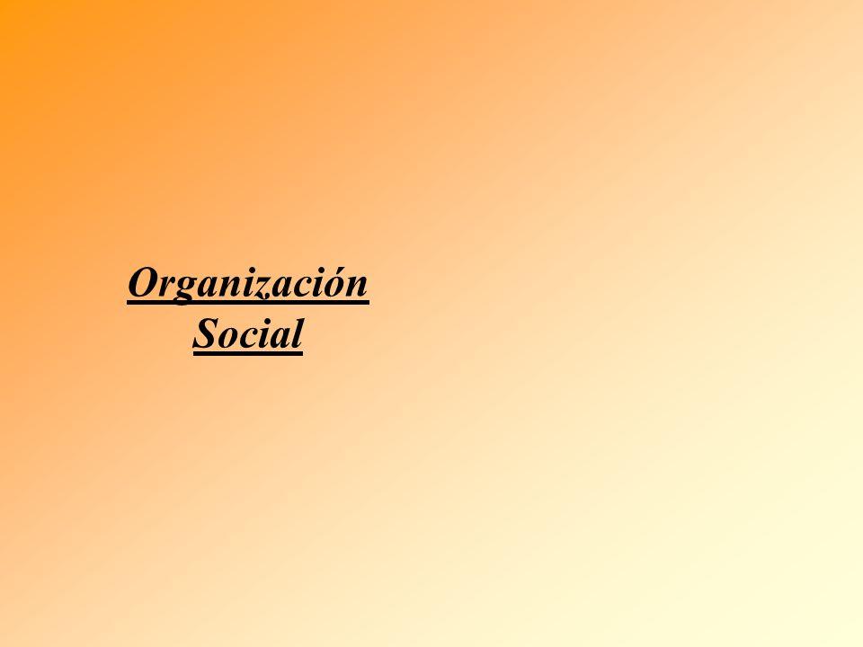 Organización Social La Institución EL Rol Las Expectativas El Individuo La Personalidad Las Necesidades e Intereses individuales DIMENSION NOMOTETICA DIMENSION IDEOGRAFICA Comportamiento Organizacional Valores y Cultura Sociales Grupos Formales Grupos Informales VALORES NORMAS