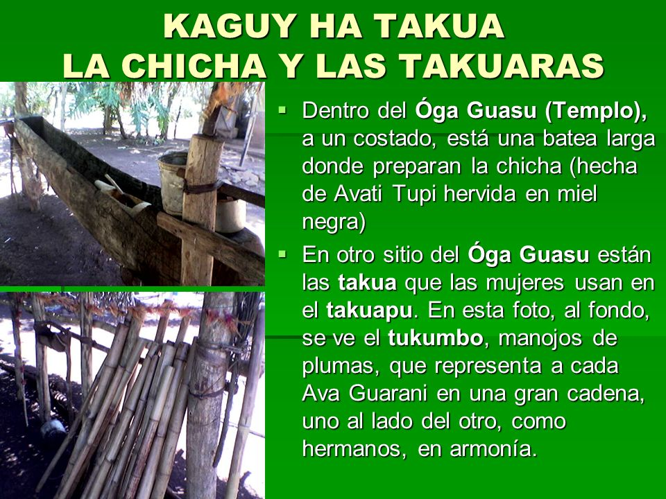 OGA GUASU – EL TEMPLO Terminado el ATYGUASU (Gran Reunión), el Chamói Guillermo Rojas nos permitió visitar el Óga Guasu donde cada día, ellos: los Ava