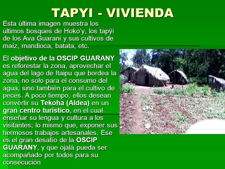 YVYRAPÂ HA HUY ARCO Y FLECHA Luego visitamos algunos tapÿi (vivienda), donde apreciamos la construcción tradicional de los AVA GUARANI. Luego visitamo