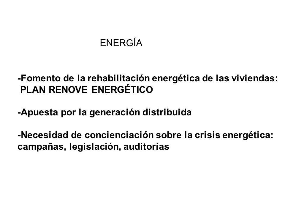 -Fomento de la rehabilitación energética de las viviendas: PLAN RENOVE ENERGÉTICO -Apuesta por la generación distribuida -Necesidad de concienciación