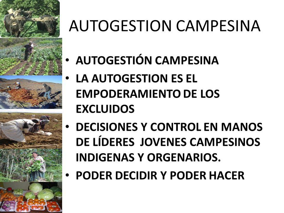 AUTOGESTION CAMPESINA AUTOGESTIÓN CAMPESINA LA AUTOGESTION ES EL EMPODERAMIENTO DE LOS EXCLUIDOS DECISIONES Y CONTROL EN MANOS DE LÍDERES JOVENES CAMP