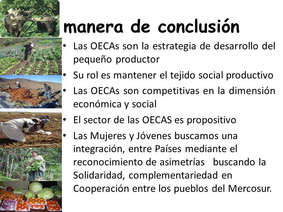 A manera de conclusión Las OECAs son la estrategia de desarrollo del pequeño productor Su rol es mantener el tejido social productivo Las OECAs son co