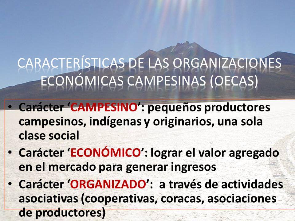 Carácter CAMPESINO: pequeños productores campesinos, indígenas y originarios, una sola clase social Carácter ECONÓMICO: lograr el valor agregado en el