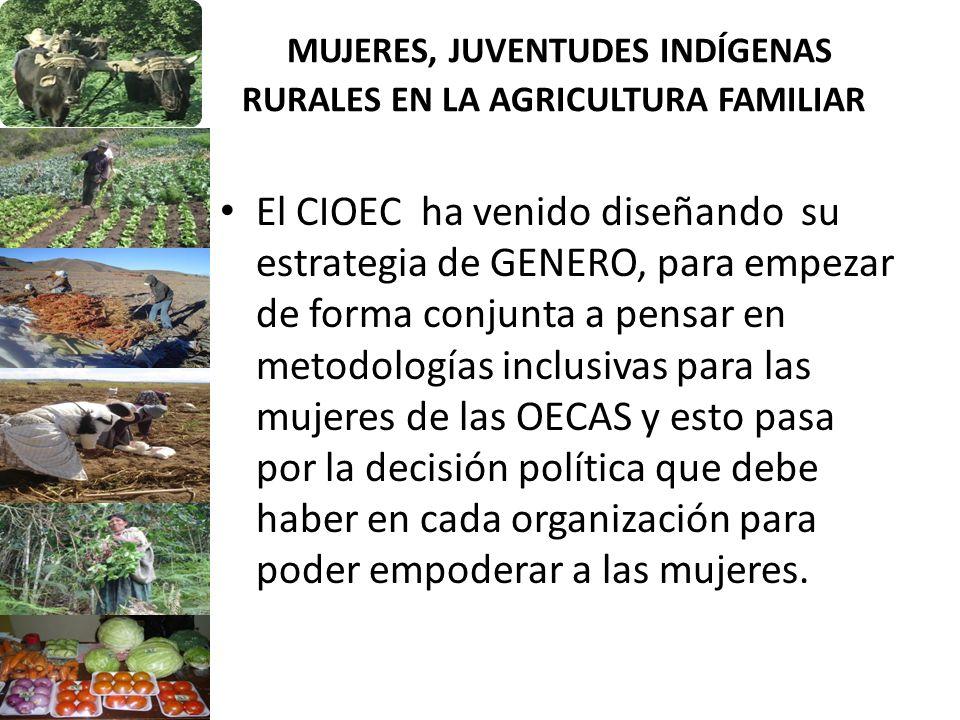 MUJERES, JUVENTUDES INDÍGENAS RURALES EN LA AGRICULTURA FAMILIAR El CIOEC ha venido diseñando su estrategia de GENERO, para empezar de forma conjunta