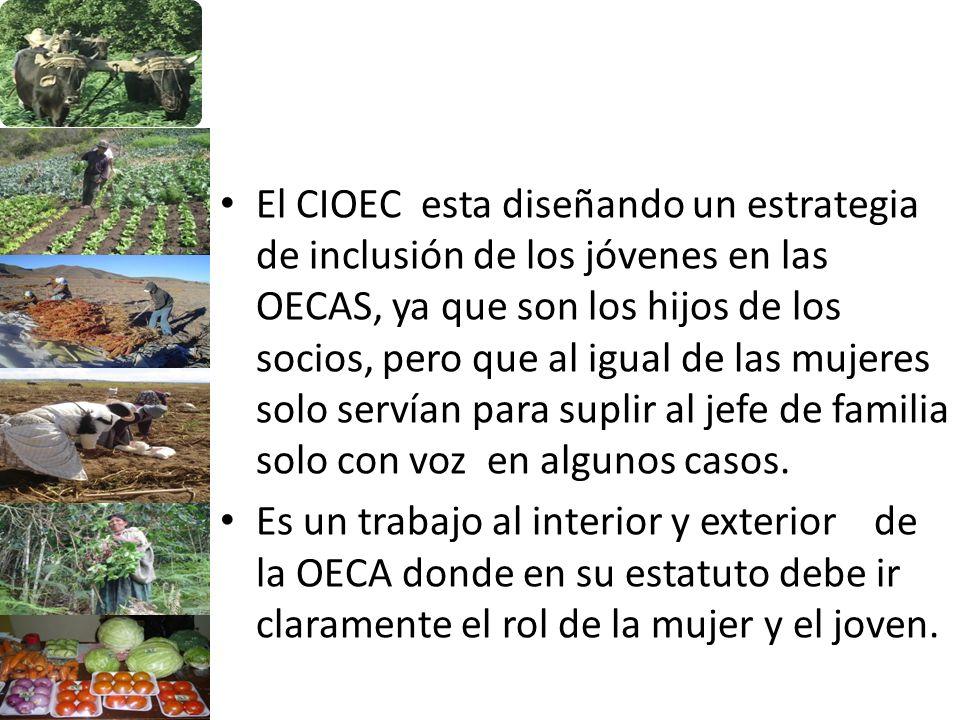 El CIOEC esta diseñando un estrategia de inclusión de los jóvenes en las OECAS, ya que son los hijos de los socios, pero que al igual de las mujeres s