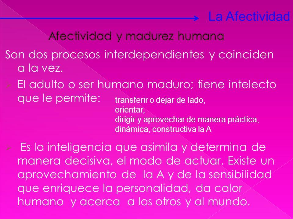 Son dos procesos interdependientes y coinciden a la vez. El adulto o ser humano maduro; tiene intelecto que le permite: Es la inteligencia que asimila