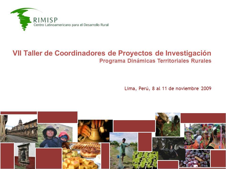 VII Taller de Coordinadores de Proyectos de Investigación Programa Dinámicas Territoriales Rurales Lima, Perú, 8 al 11 de noviembre 2009
