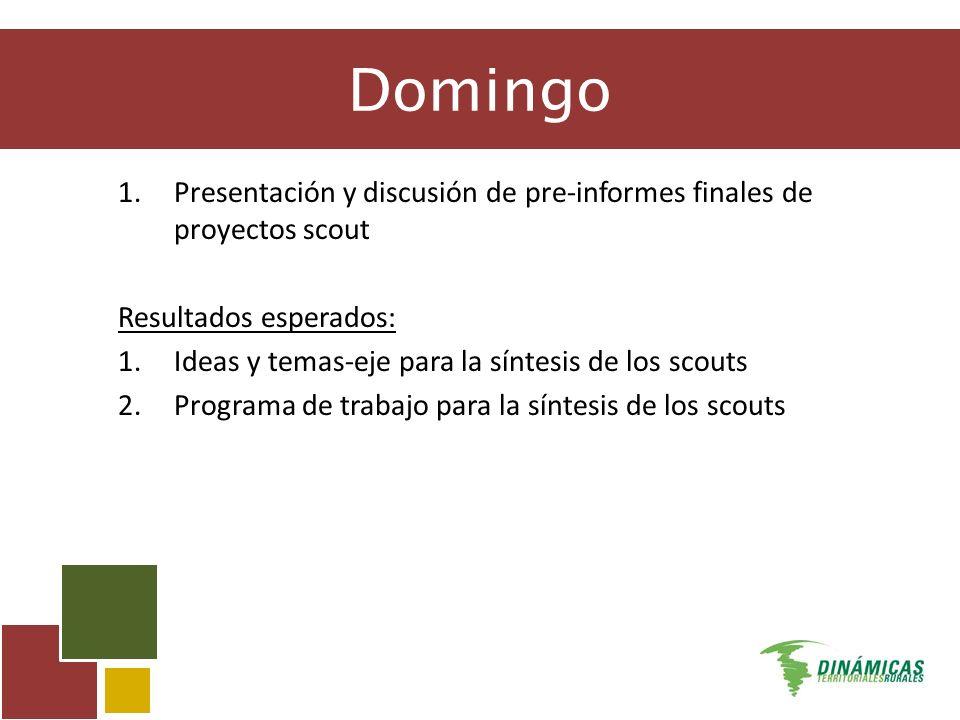 Domingo 1.Presentación y discusión de pre-informes finales de proyectos scout Resultados esperados: 1.Ideas y temas-eje para la síntesis de los scouts 2.Programa de trabajo para la síntesis de los scouts