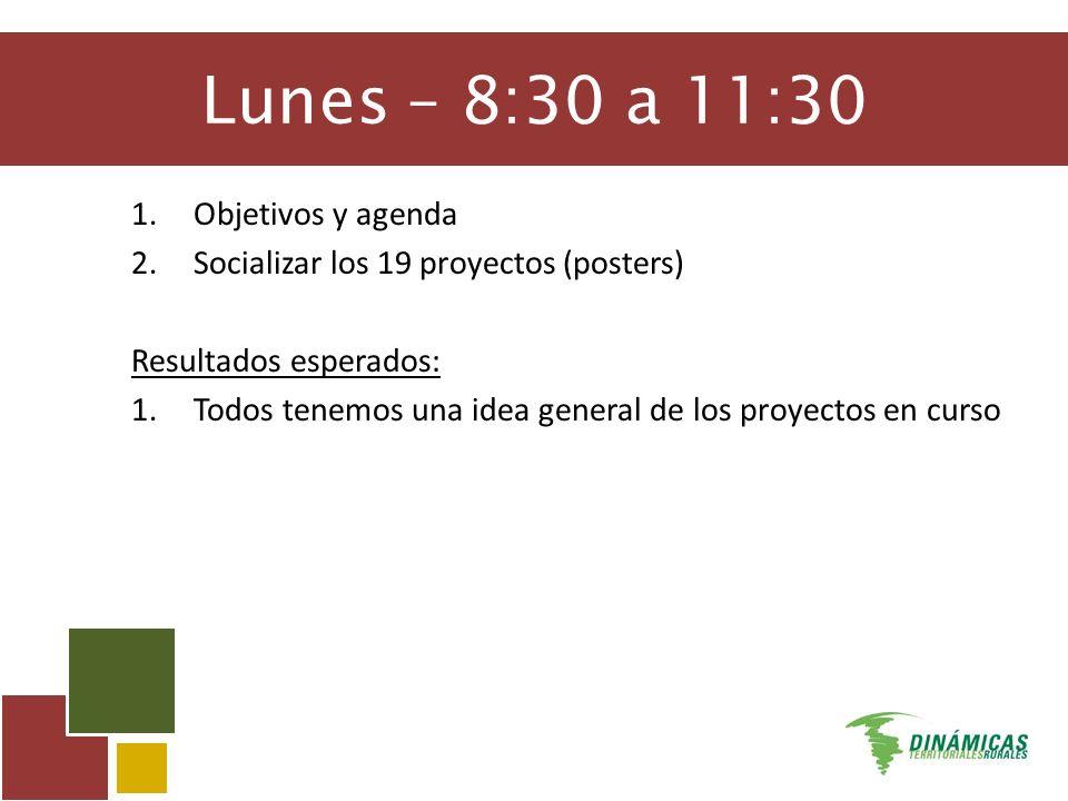 Lunes – 8:30 a 11:30 1.Objetivos y agenda 2.Socializar los 19 proyectos (posters) Resultados esperados: 1.Todos tenemos una idea general de los proyectos en curso