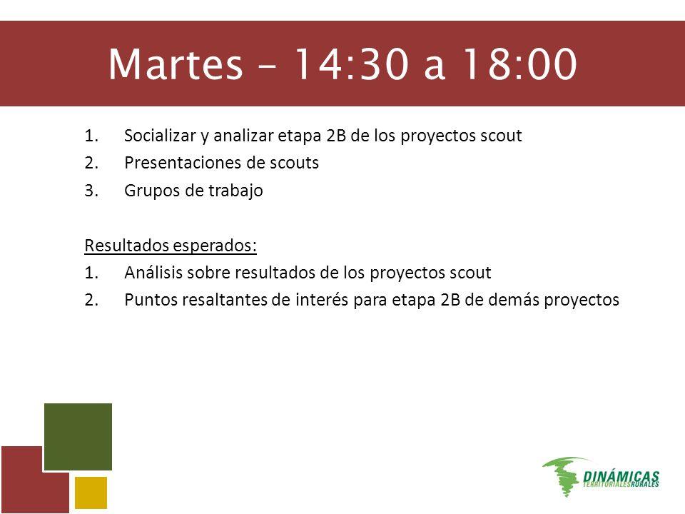 Martes – 14:30 a 18:00 1.Socializar y analizar etapa 2B de los proyectos scout 2.Presentaciones de scouts 3.Grupos de trabajo Resultados esperados: 1.Análisis sobre resultados de los proyectos scout 2.Puntos resaltantes de interés para etapa 2B de demás proyectos