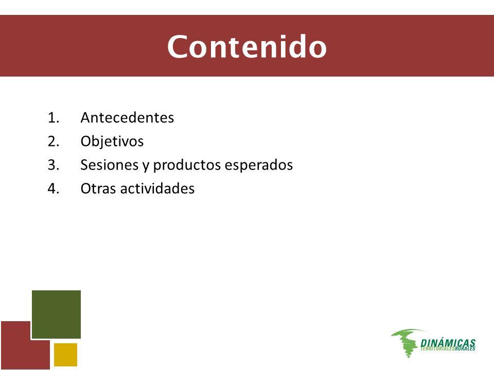 Contenido 1.Antecedentes 2.Objetivos 3.Sesiones y productos esperados 4.Otras actividades