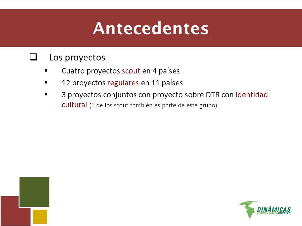 Antecedentes Los proyectos Cuatro proyectos scout en 4 países 12 proyectos regulares en 11 países 3 proyectos conjuntos con proyecto sobre DTR con identidad cultural (1 de los scout también es parte de este grupo)