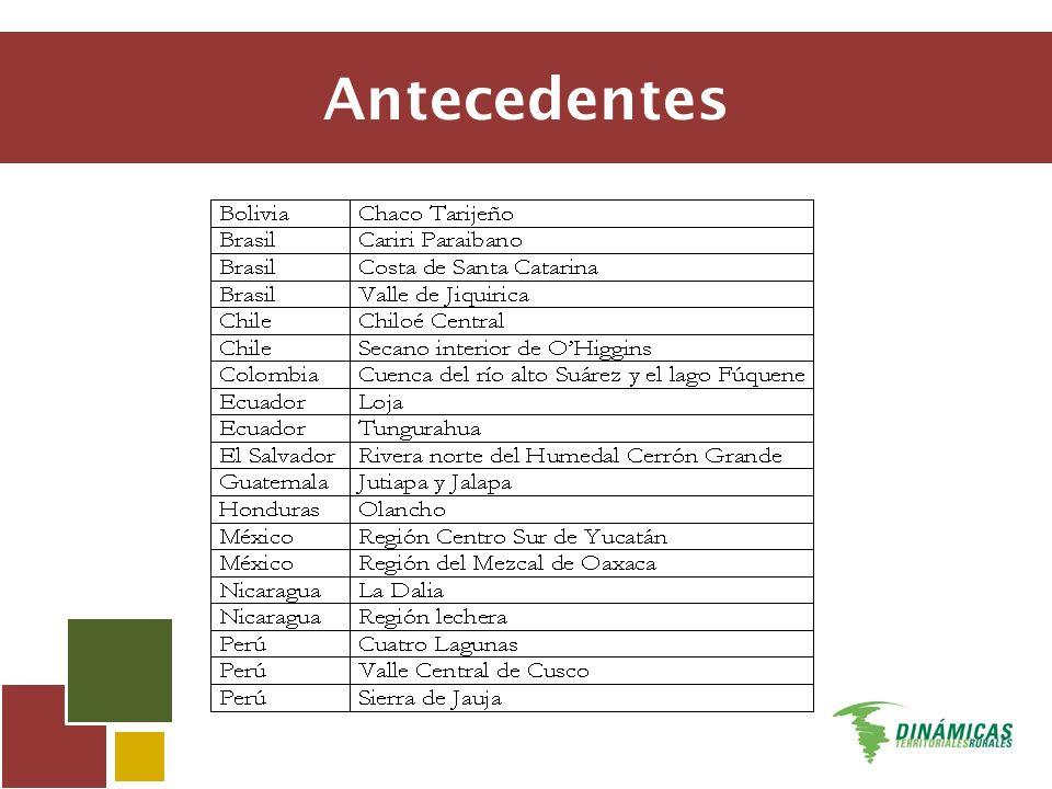 Etapa 1 Mapas nacionales de dinámicas territoriales Etapa 2A Análisis preliminar del territorio, de sus dinámicas, cambios institucionales y actores Etapa 2B Investigación en profundidad Etapa 3 Síntesis entre proyectos
