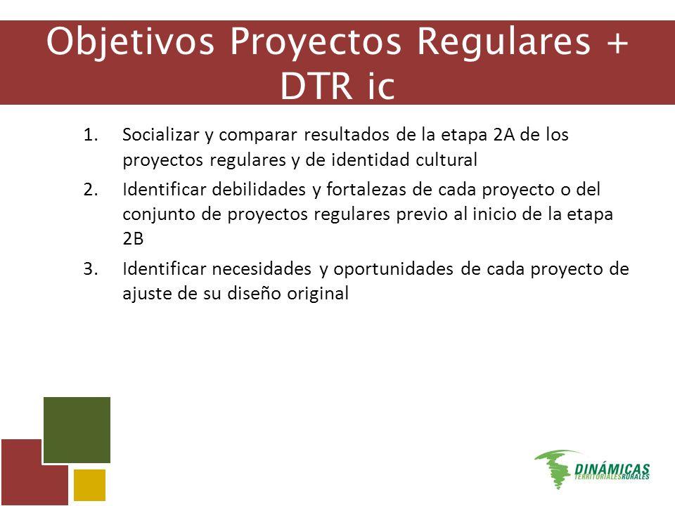 Objetivos Proyectos Regulares + DTR ic 1.Socializar y comparar resultados de la etapa 2A de los proyectos regulares y de identidad cultural 2.Identificar debilidades y fortalezas de cada proyecto o del conjunto de proyectos regulares previo al inicio de la etapa 2B 3.Identificar necesidades y oportunidades de cada proyecto de ajuste de su diseño original