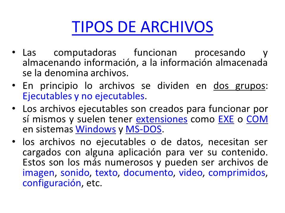 TIPOS DE ARCHIVOS Las computadoras funcionan procesando y almacenando información, a la información almacenada se la denomina archivos. En principio l