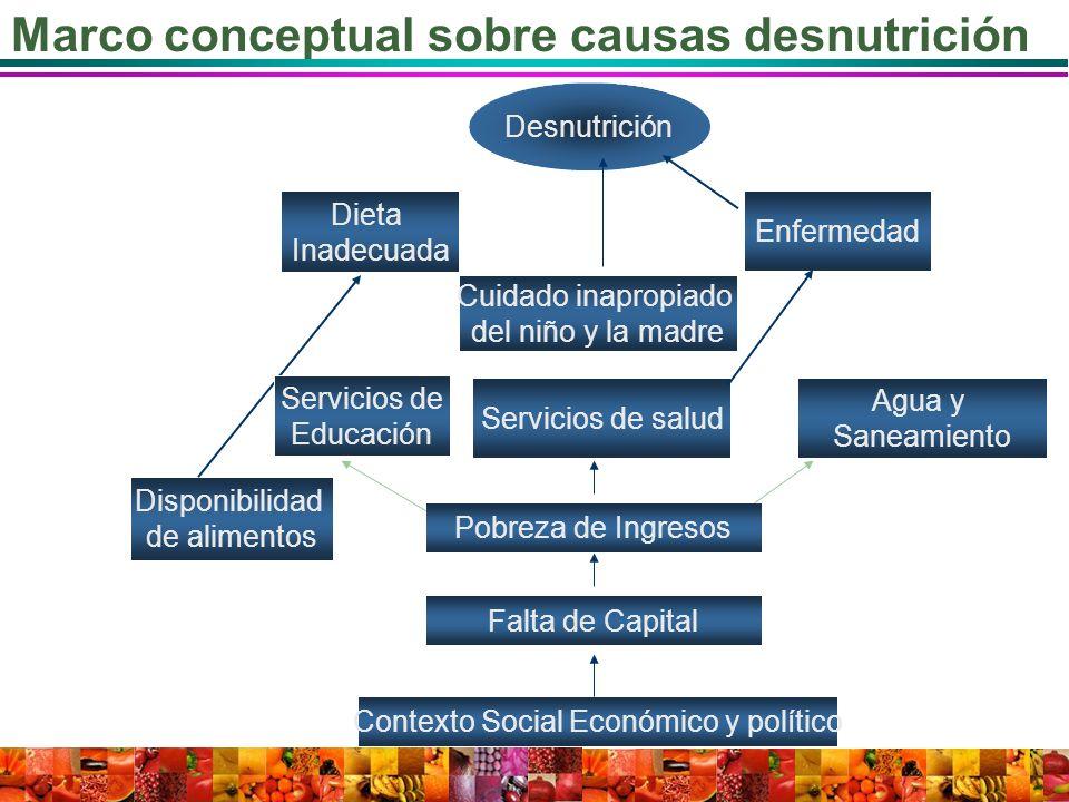 Marco conceptual sobre causas desnutrición Desnutrición Enfermedad Dieta Inadecuada Disponibilidad de alimentos Servicios de salud Agua y Saneamiento