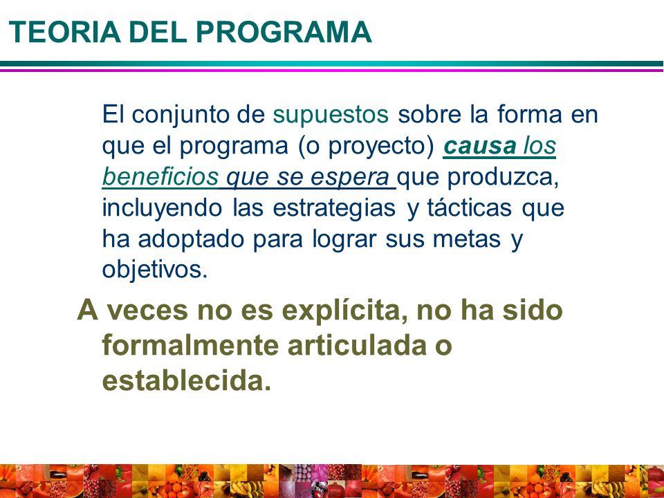 TEORIA DEL PROGRAMA El conjunto de supuestos sobre la forma en que el programa (o proyecto) causa los beneficios que se espera que produzca, incluyend