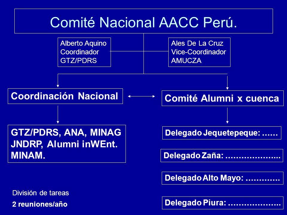 Comité Nacional AACC Perú.