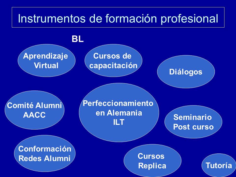 Instrumentos de formación profesional Cursos de capacitación Comité Alumni AACC Aprendizaje Virtual Diálogos BL Seminario Post curso Perfeccionamiento en Alemania ILT Conformación Redes Alumni Cursos Replica Tutoría