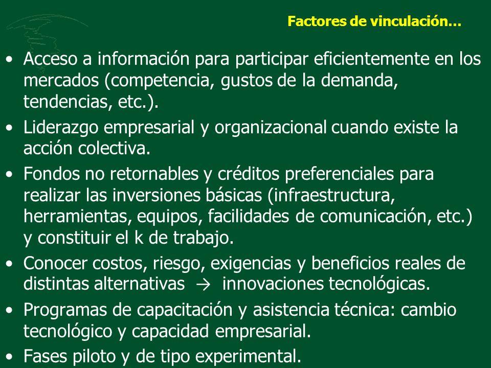 Factores de vinculación… Acceso a información para participar eficientemente en los mercados (competencia, gustos de la demanda, tendencias, etc.). Li