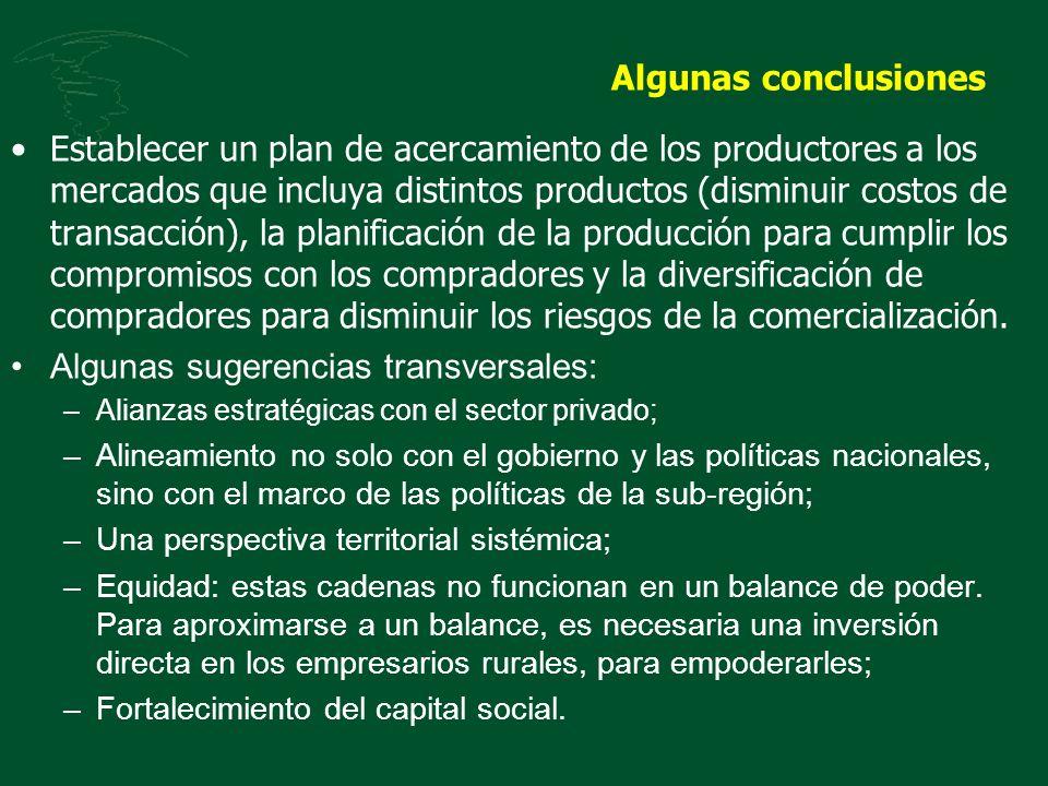 Algunas conclusiones Establecer un plan de acercamiento de los productores a los mercados que incluya distintos productos (disminuir costos de transac