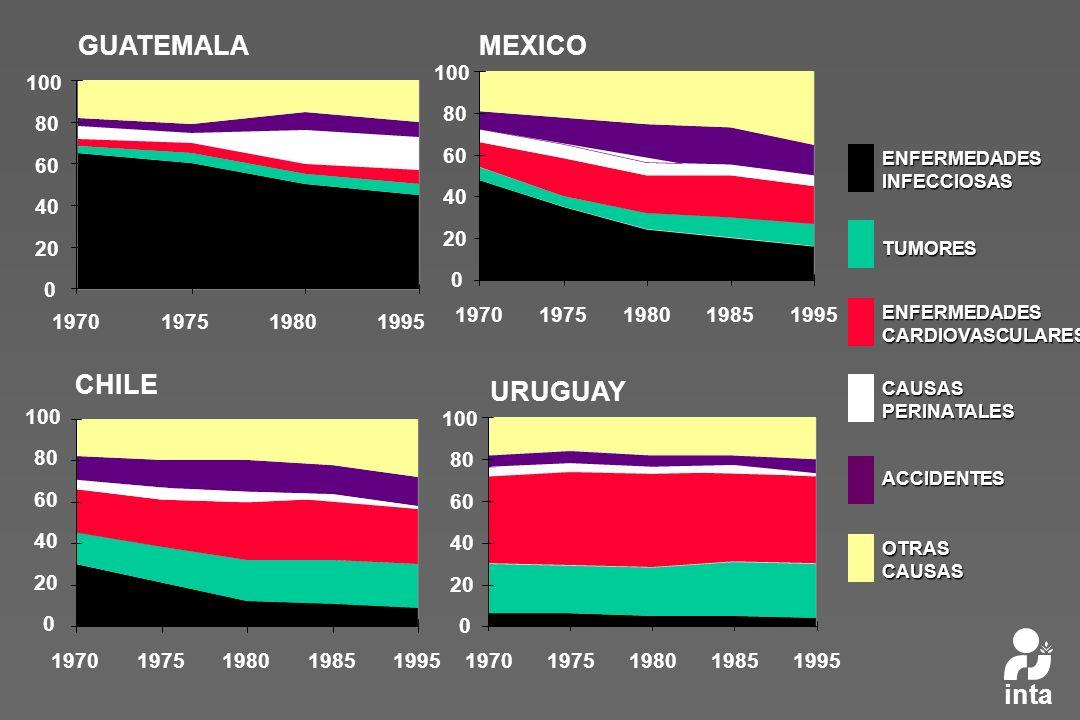 Causas de Muertes según región de OMS OMS 2001 Crónicas NT Accidente s Infecciosas y perinatales