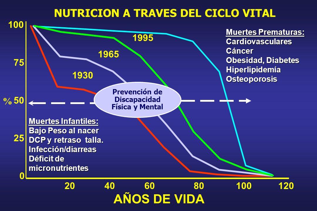 CHILE 0 20 40 60 80 100 19701975198019851995 MEXICO 19701975198019851995 0 20 40 60 80 100 0 20 40 60 80 100 GUATEMALA 1970197519801995 URUGUAY 0 20 4