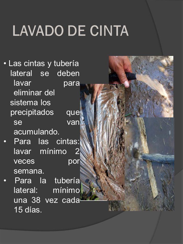 LAVADO DE CINTA Las cintas y tubería lateral se deben lavar para eliminar del sistema los precipitados que se van acumulando. Para las cintas: lavar m