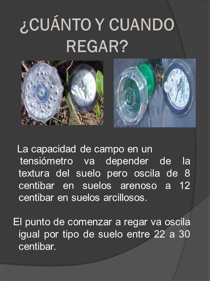 ¿CUÁNTO Y CUANDO REGAR? La capacidad de campo en un tensiómetro va depender de la textura del suelo pero oscila de 8 centibar en suelos arenoso a 12 c