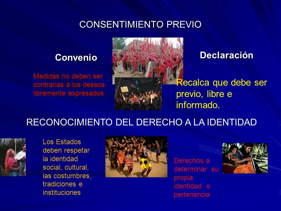 CONSENTIMIENTO PREVIO Convenio Declaración Declaración RECONOCIMIENTO DEL DERECHO A LA IDENTIDAD Los Estados deben respetar la identidad social, cultu