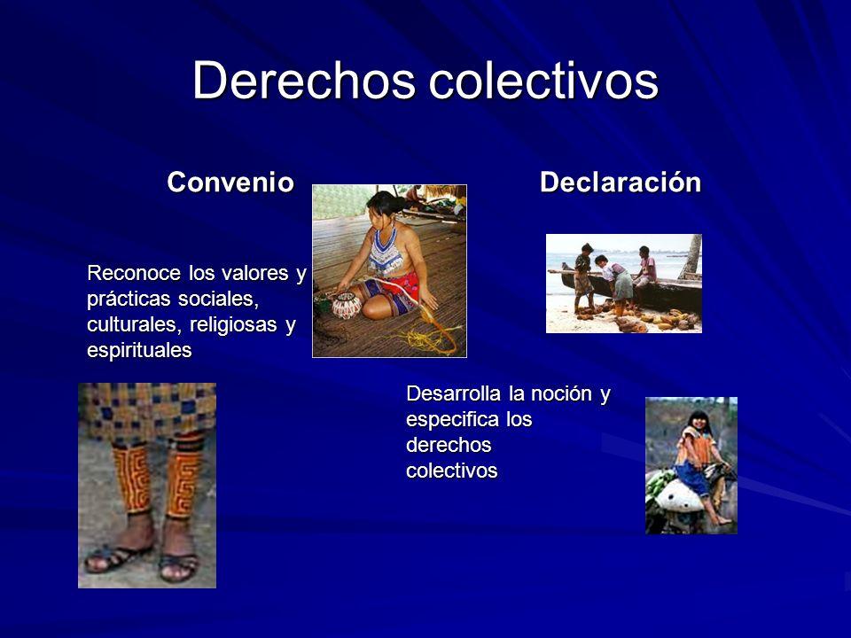 Derechos colectivos ConvenioDeclaración Reconoce los valores y prácticas sociales, culturales, religiosas y espirituales Desarrolla la noción y especi