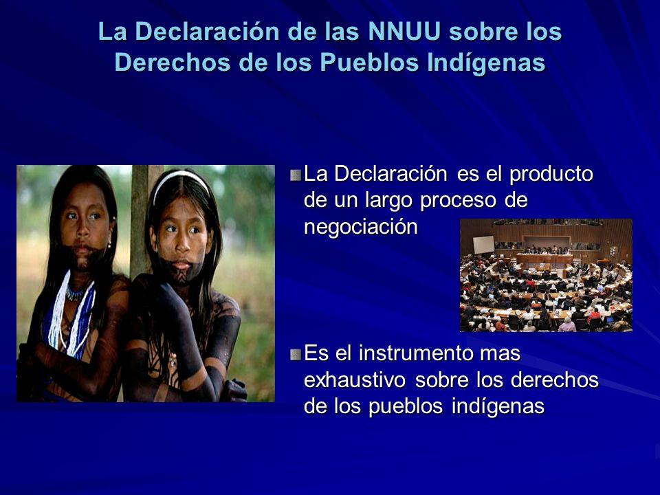 La Declaración de las NNUU sobre los Derechos de los Pueblos Indígenas La Declaración es el producto de un largo proceso de negociación Es el instrume