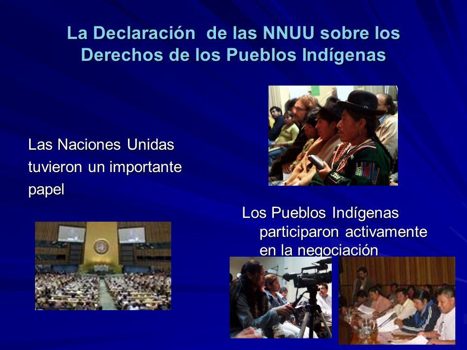 La Declaración de las NNUU sobre los Derechos de los Pueblos Indígenas Las Naciones Unidas tuvieron un importante papel Los Pueblos Indígenas particip