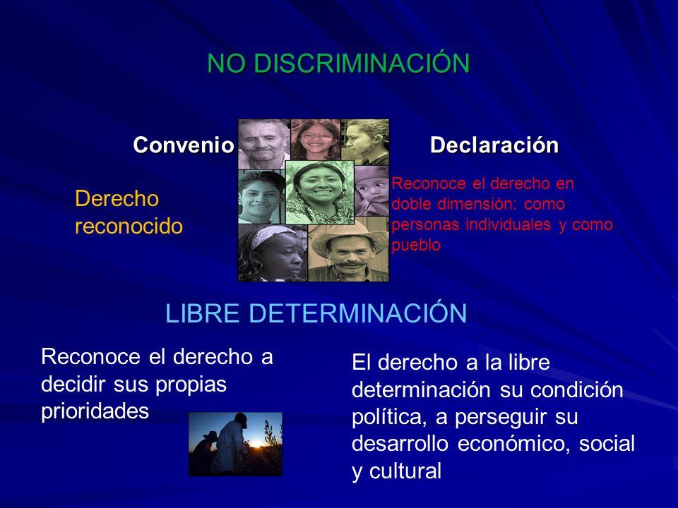 NO DISCRIMINACIÓN ConvenioDeclaración LIBRE DETERMINACIÓN Reconoce el derecho a decidir sus propias prioridades El derecho a la libre determinación su
