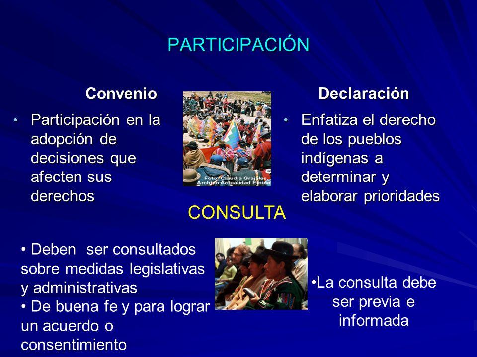 PARTICIPACIÓN Convenio Participación en la adopción de decisiones que afecten sus derechos Participación en la adopción de decisiones que afecten sus