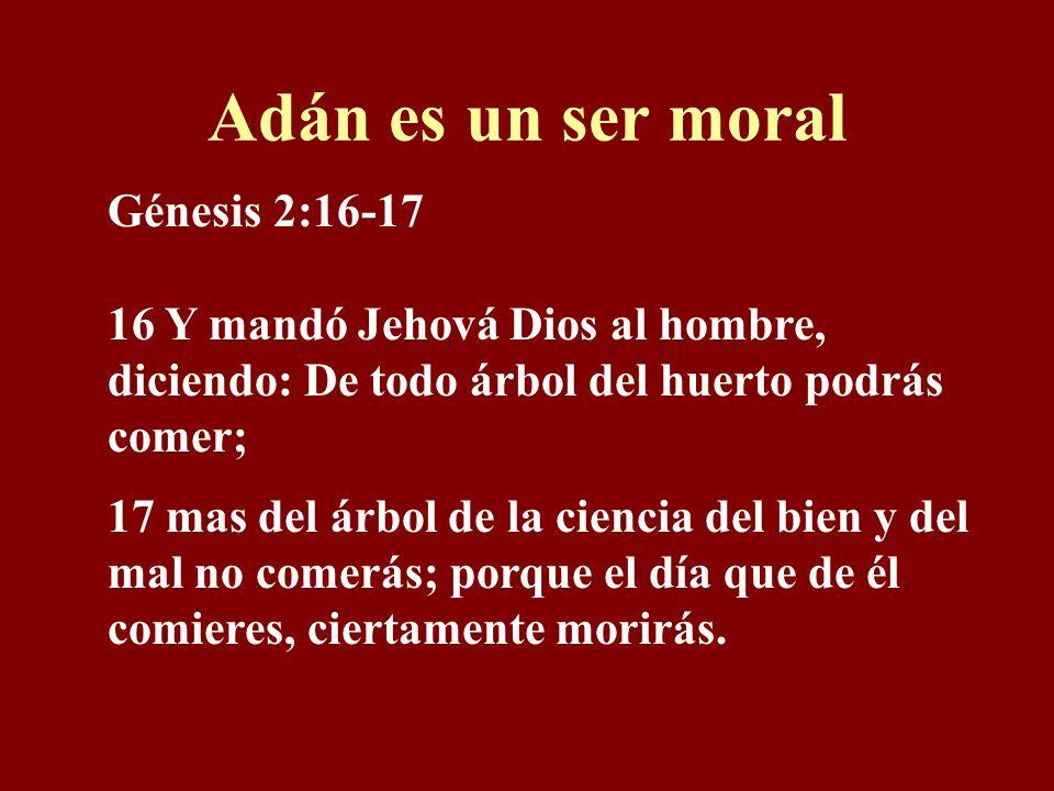 Adán es un ser moral Génesis 2:16-17 16 Y mandó Jehová Dios al hombre, diciendo: De todo árbol del huerto podrás comer; 17 mas del árbol de la ciencia del bien y del mal no comerás; porque el día que de él comieres, ciertamente morirás.