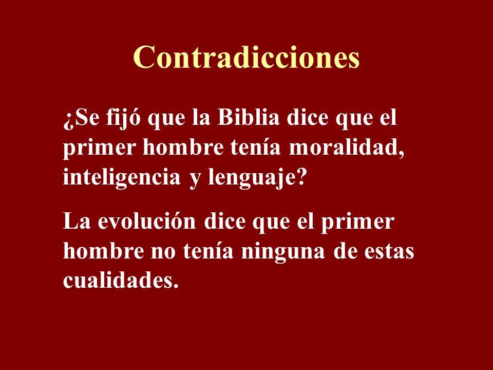 Contradicciones ¿Se fijó que la Biblia dice que el primer hombre tenía moralidad, inteligencia y lenguaje.